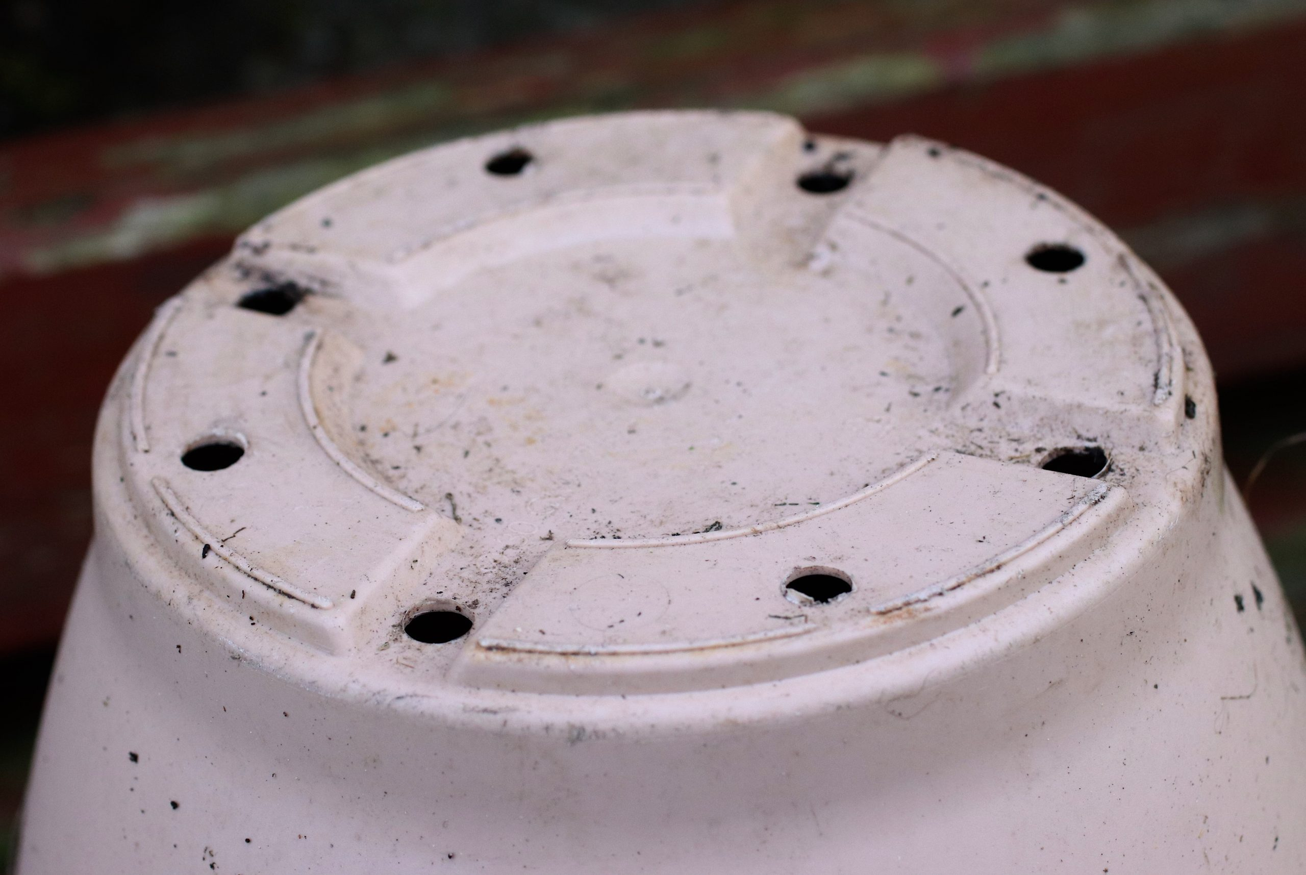 Drainage holes in pot